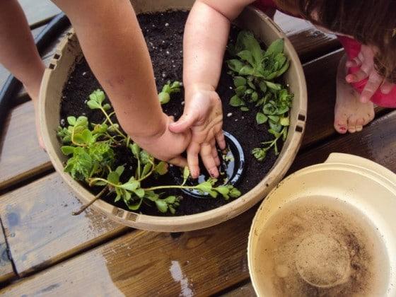 Small world play - fairy garden
