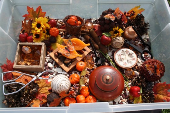 overview of autumn sensory bin