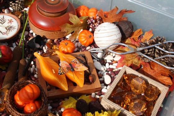 Autumn Sensory Bin for toddlers and preschoolers