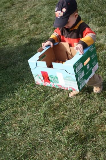 toddler making art in a cardboard box