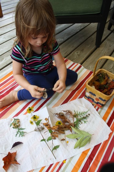toddler examining leaves and plants collected on nature walk
