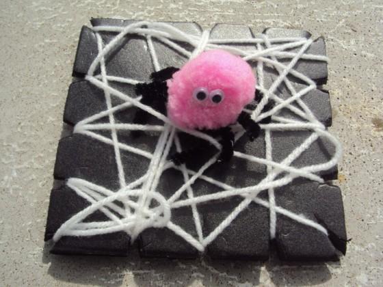 pom pom spider on a wooly web