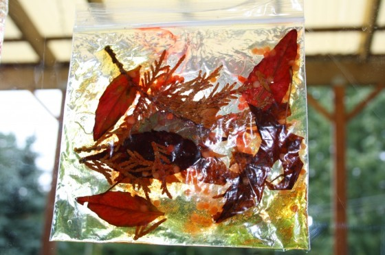 ziplock bag filled with hair gel and fall leaves