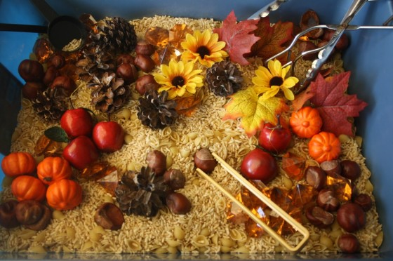 november sensory bin filled with fall goodies