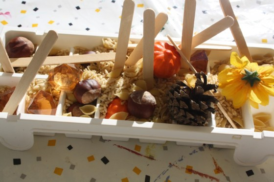 Various Fall Items for Preschoolers to explore