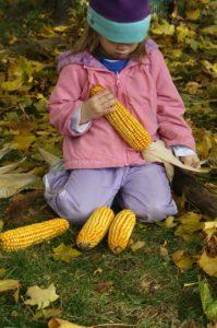 sensory play with corn cobs
