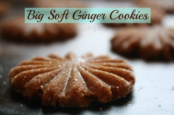 Big soft ginger cookies are a favourite at our house. If you like ...