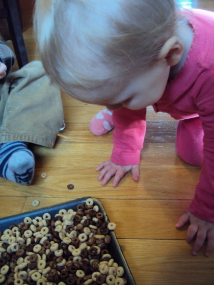 toddler looking at tray of cheerios