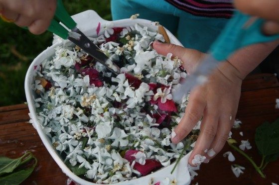 child cutting flowers into bowl of water