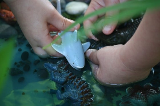 aquatic animals in dinosaur sensory bin