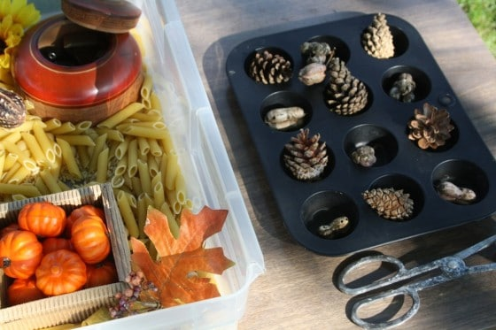 what to put in a fall sensory bin