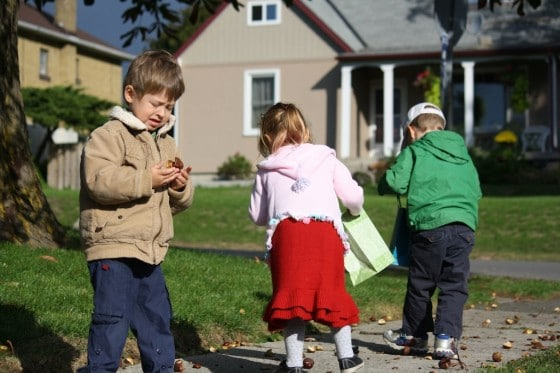 preschoolers gathering chestnuts on sidewalk