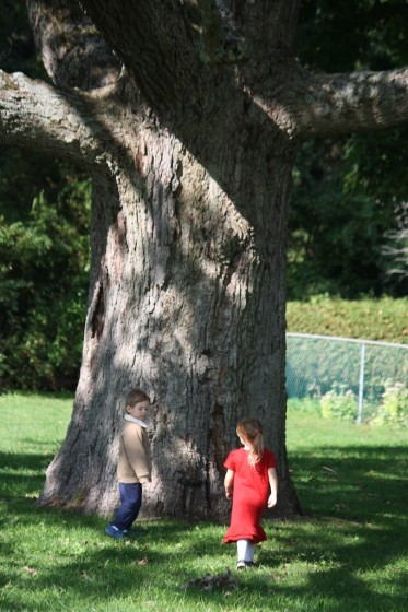 preschool boy and girl standing under tree in park