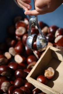 Chestnuts for play in daycare and preschool