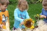 Sensory Play with Corn Cobs and Sunflowers