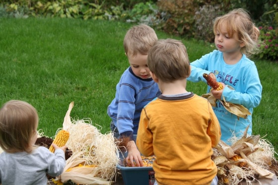 fall activity for kids with corn cobs and sunflowers