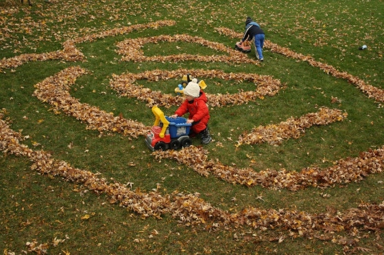 backyard maze with fall leaves