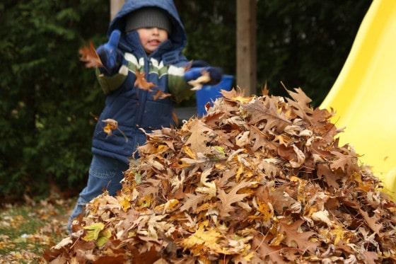 preschooler in blue jacket raking leaves to bottom of slide