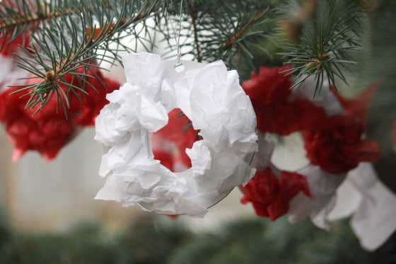 wreaths hanging on spruce tree