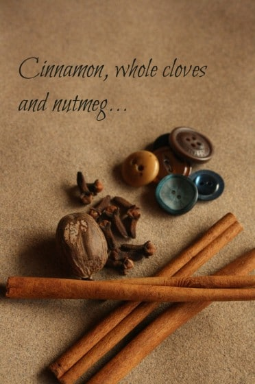 cinnamon sticks, cloves, nutmeg and buttons displayed on a piece of sandpaper