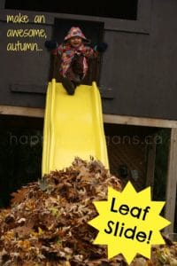 leaf slide cover photo