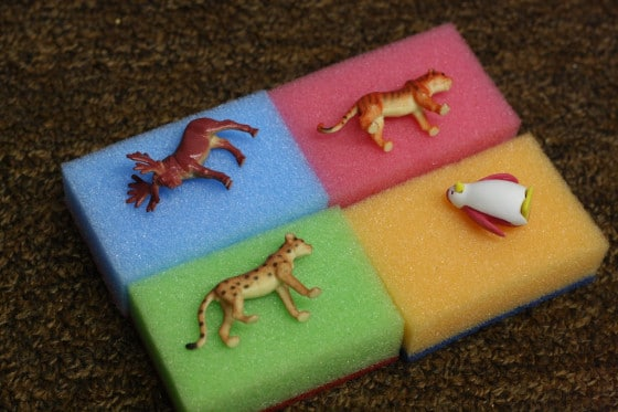 "4 sponges with toy animals on them for ""beds"""