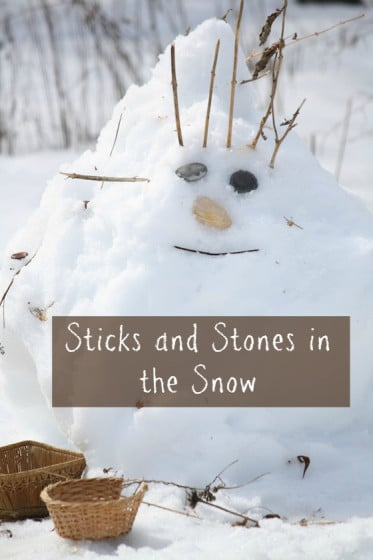sticks and stones in the snow cover shot