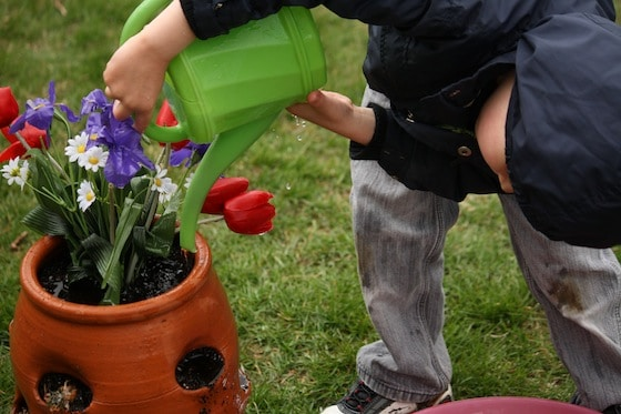 preschool boy watering artificial flowers in pot