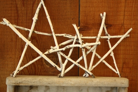 twigs painted with white craft paint for Summer Stars