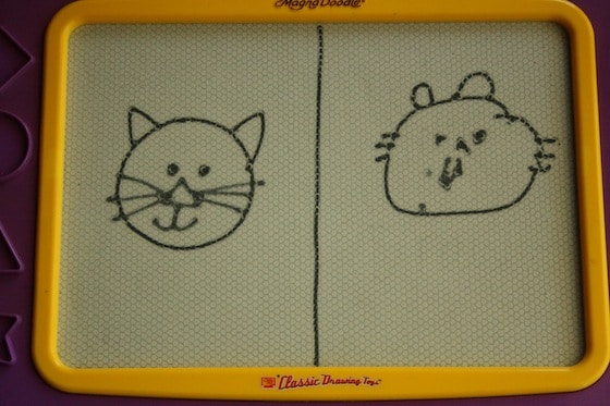 cat faces on the magnadoodle
