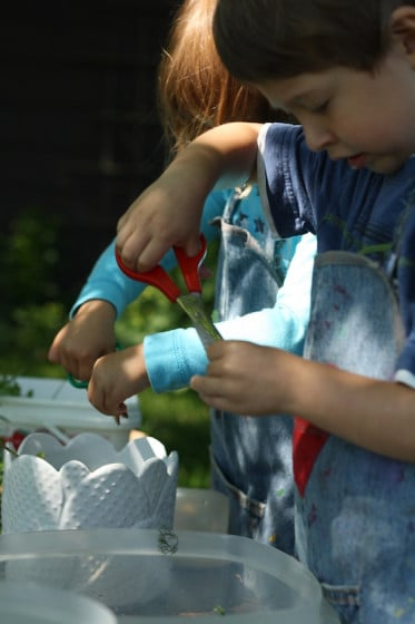 Sensory Soup - exploring fresh herbs and flowers