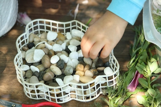 Adding stones and shells to herbs and flowers for Sensory Soup