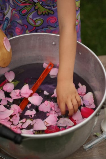 adding roses to the fairy soup