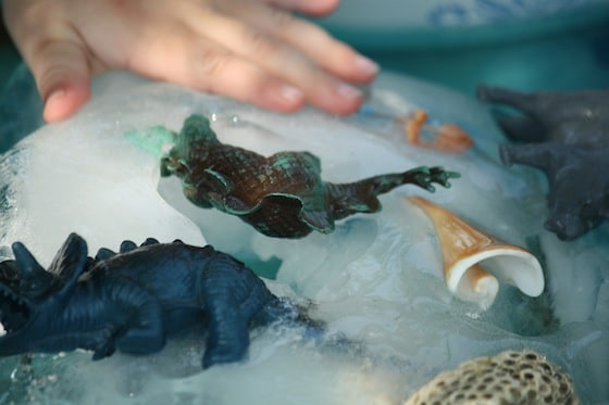 dinosaurs and shells frozen in ice