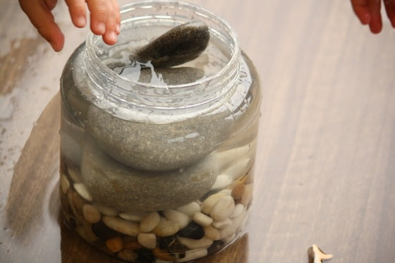 jar filled with rocks and water to observe water displacement