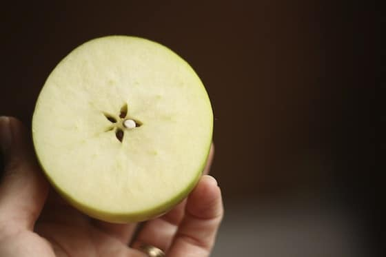 apple cut cross-wise reveals star