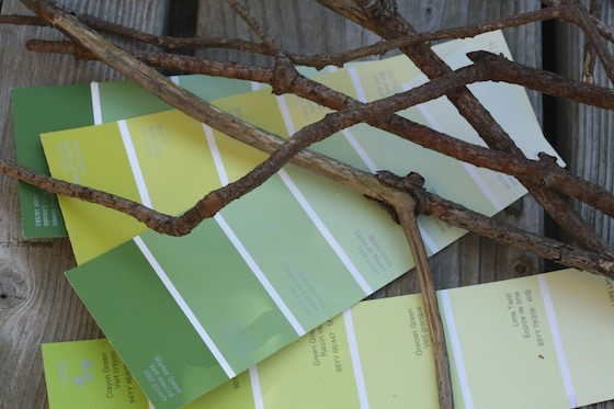 twigs and paint swatches for paint swatch apple trees