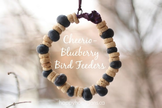 homemade bird feeders with cheerios and blueberries hanging from tree