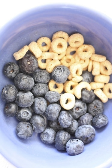 bowl of Cheerios and blueberries for pipe cleaner bird feeders