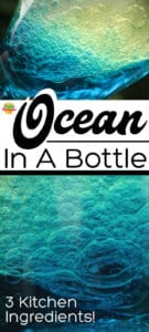Ocean in a Bottle Sensory or Discovery Bottle for Kids