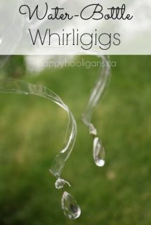 water-bottle whirligigs