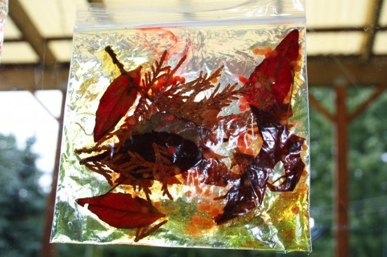 fall leaf, hair gel sun catchers