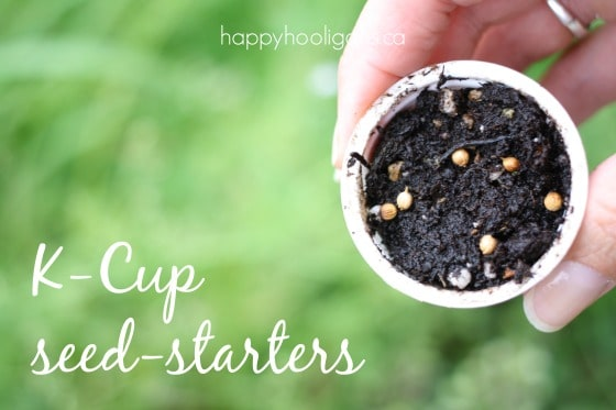 k-cup seed starters