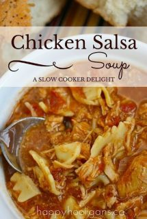 Slow Cooker Chicken Salsa Soup