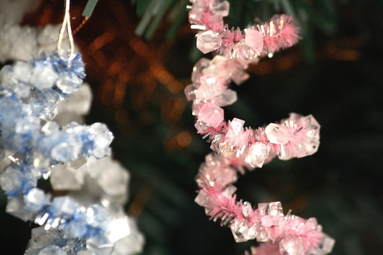 crystallized pipe cleaner ornaments