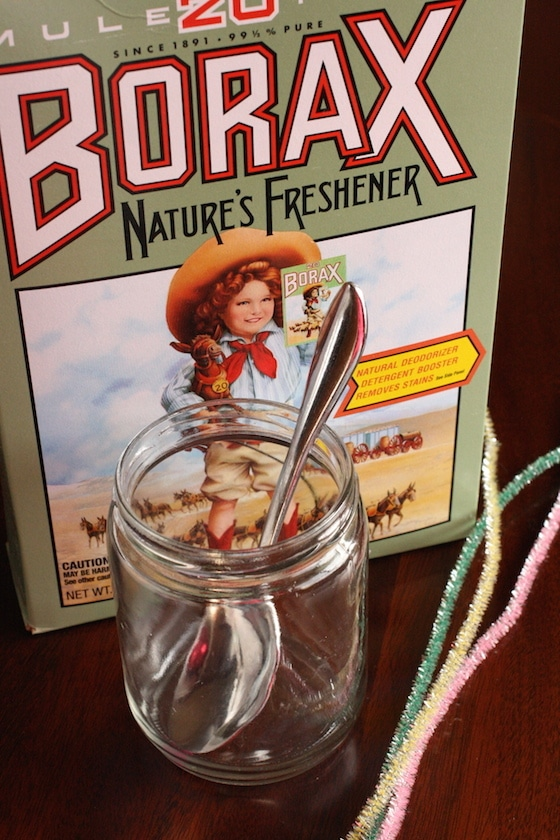 supplies for borax and pipe cleaner ornaments