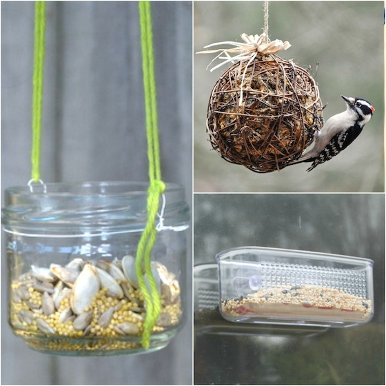 3 cool homemade bird feeders - Happy Hooligans