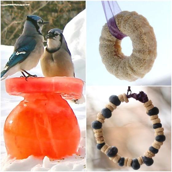 32 beautiful bird feeder crafts