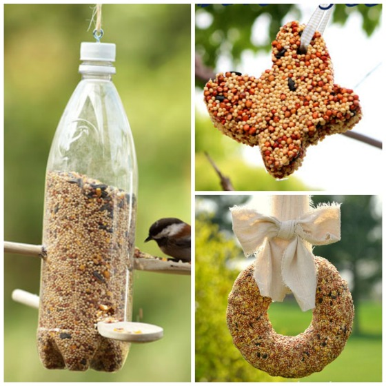 water bottle bird feeder - wreath bird feeder - cookie cutter bird feeder