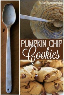 Best Pumpkin Chocolate Chip Cookie Recipe
